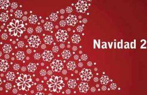 catalogo de navidad cadena 88